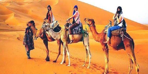 Best Safari Dubai