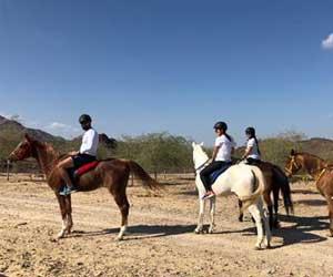 Horse riding at Hatta