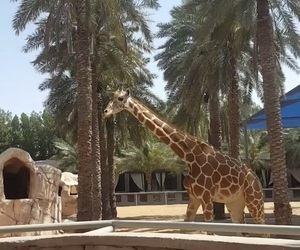 Alain Zoo Abu Dhabi